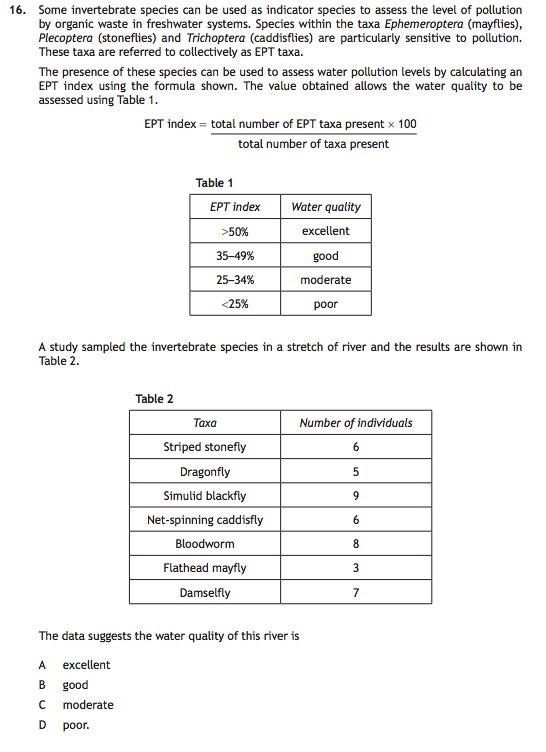 Thesis about english proficiency of students