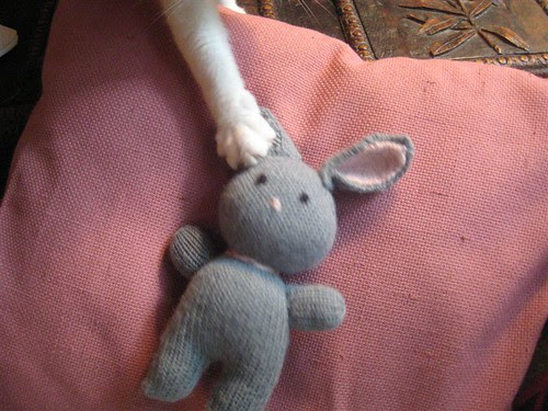 The cat after Eva's bunny