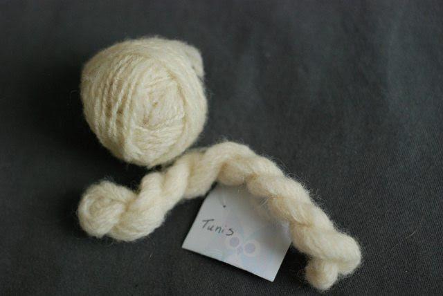 Tunis handspun yarn wool American sheep breed