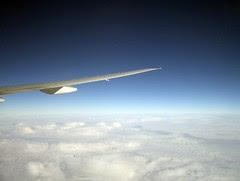 Flickr: wing