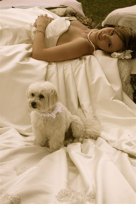 26 best images about weddings & pets on Pinterest