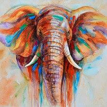 Fil Kafası Resim Ucuza Satın Alın Fil Kafası Resim Partiler Fil