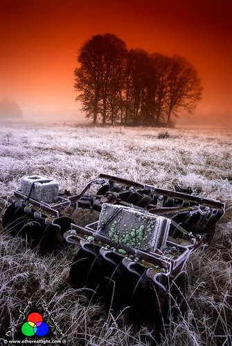 Frost and fog. by Douglas Remington - Ethereal Light® Photography