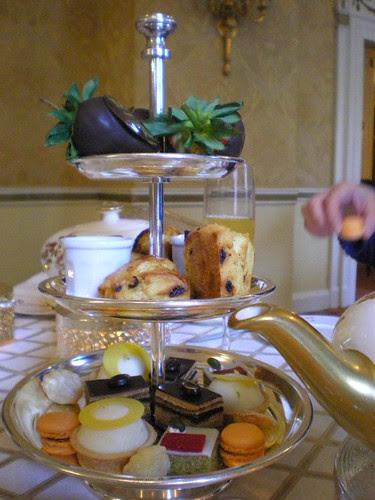 Boston Taj Tea