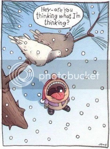 http://i285.photobucket.com/albums/ll43/BUTTERFLY-7_2008/christmas_merry_santa_jokes_funny_y.jpg