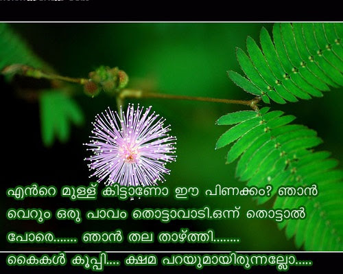 Sneham Malayalam Quotes Facebook Image Share
