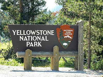 Yellowstone National Park .jpg