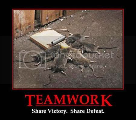 Mice Trap,Teamwork