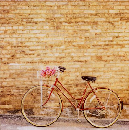 simple pleasures biking_via mrsamberapple