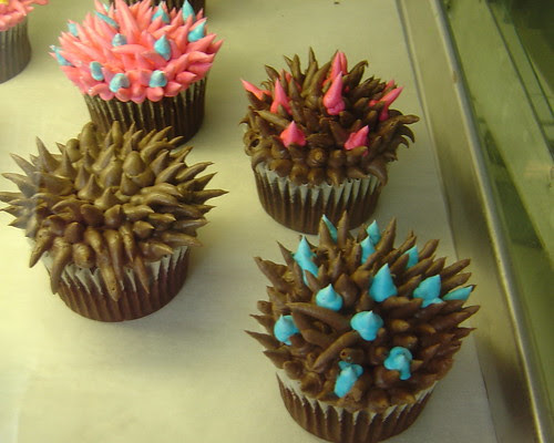 Cosmo's Cupcakes