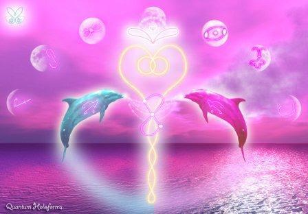 dolphinunion