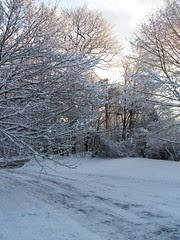 Snow_12010e