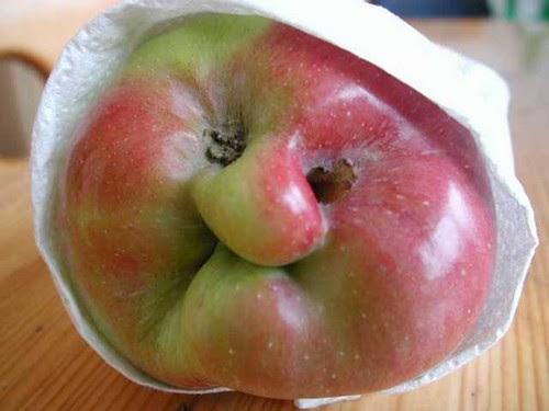 [CGM] Ivan the Icky apple