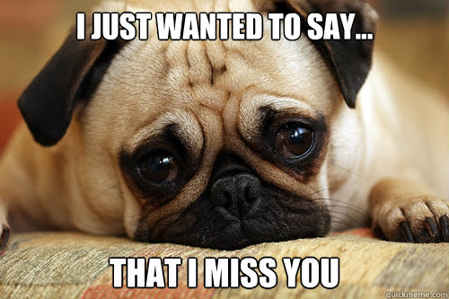 I Just Wanted To Say That I Miss You Sad Pug Quickmeme
