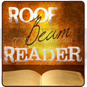 Roof Beam Reader