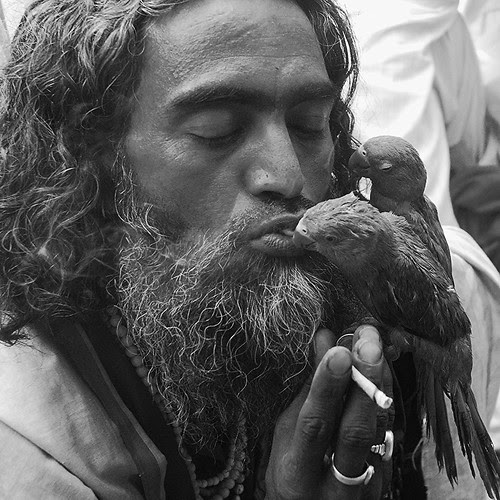 The Rafaee Of Ajmer ..With His Loving Pair..Love Smoke And Air by firoze shakir photographerno1