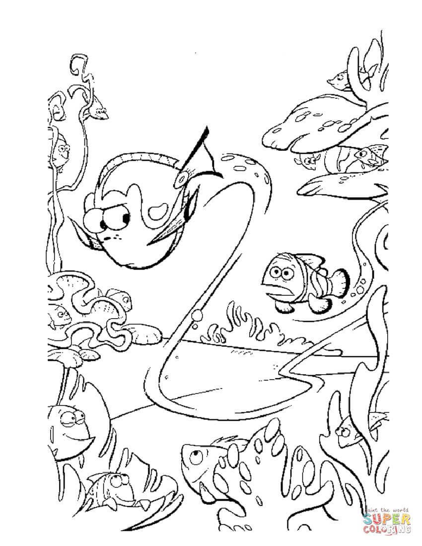 Dibujo De Dory Nada Demasiado Rápido Para Colorear Dibujos Para