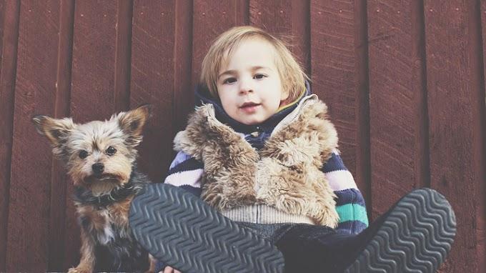Los principales beneficios de tener una mascota en el hogar para los niños