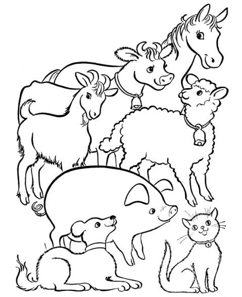 Disegni Da Colorare Di Animali Della Fattoria