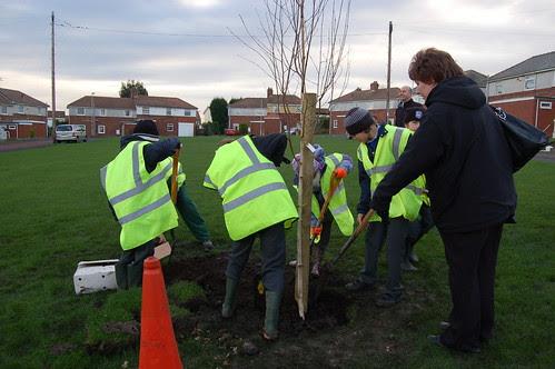 Washingwell School tree planting Dev 09 no 16