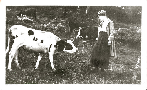 cow and woman