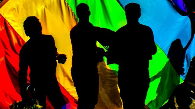Revellers partying behind a gay pride flag