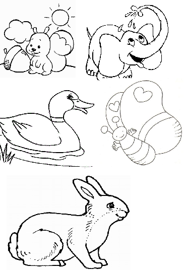 Ingilizce Hayvanlar Animals Yazılışları Ve Anlamları Arabulokucom
