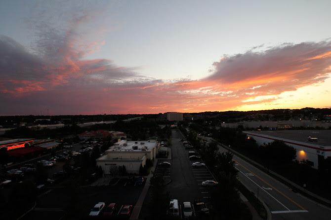 The Springdale Skyline