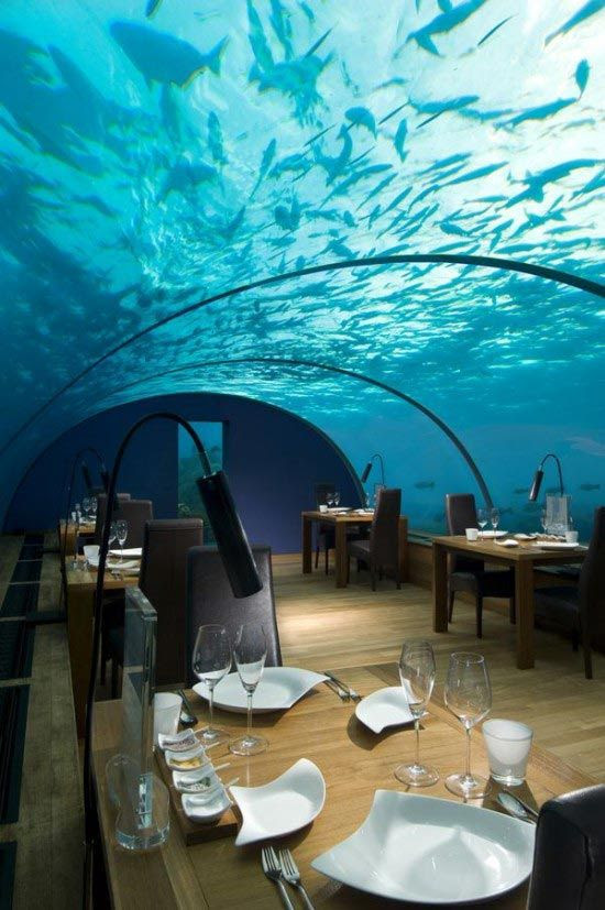 under sea crazy restaurant2 World's First Ever Undersea Restaurant   Ithaa