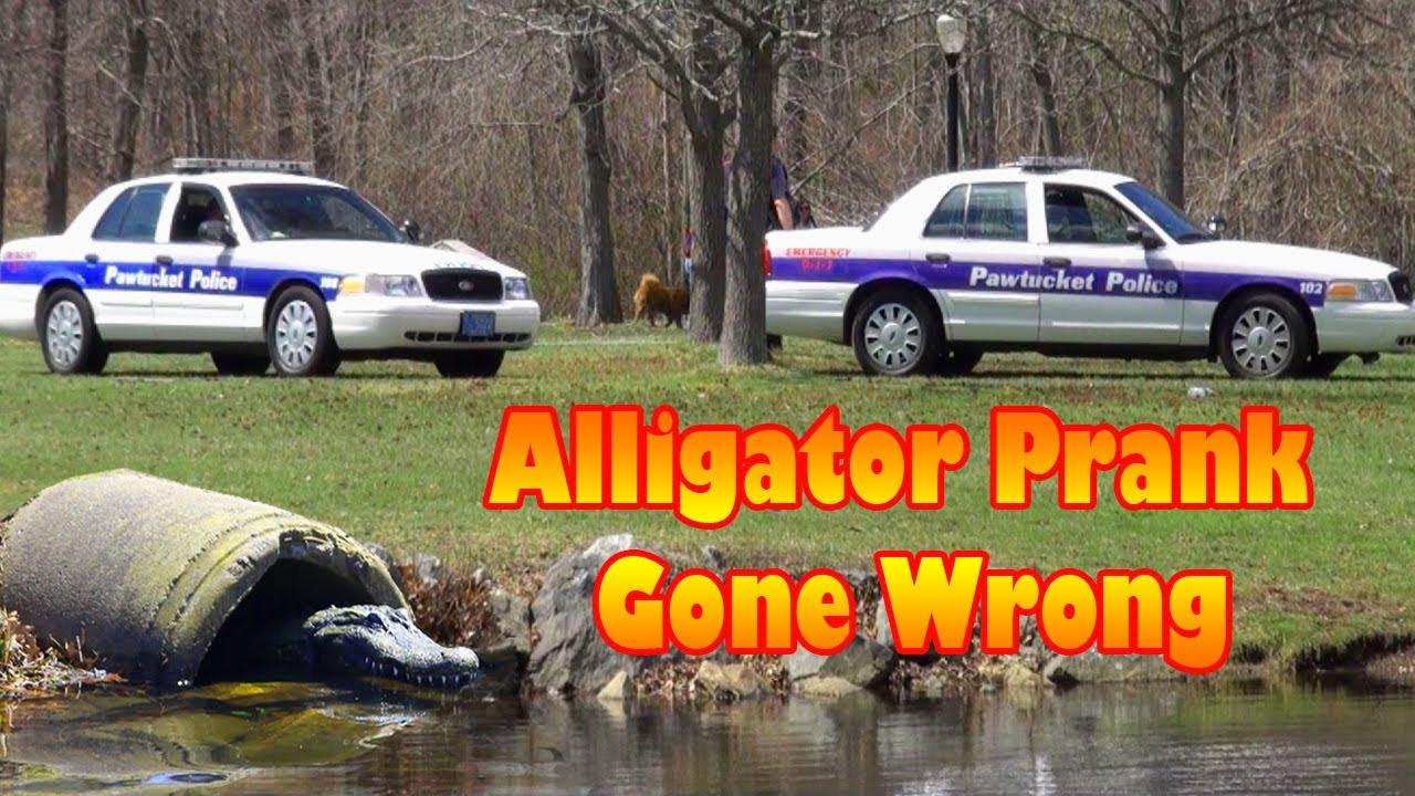 Φάρσα με αλιγάτορα