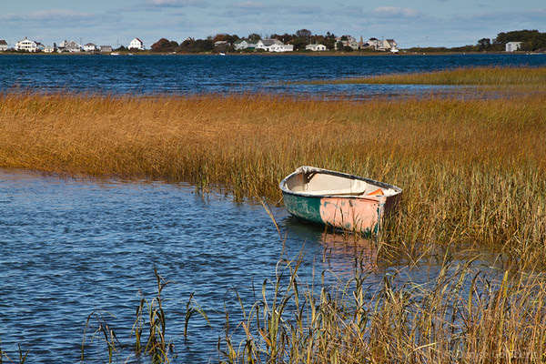 boat floating, grasses