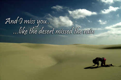 And I Miss You Like The Desert Missed The Rain Pictures Photos And