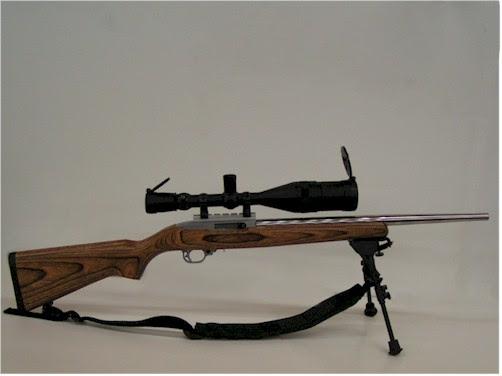 http://www.ct-precision.com/images/1022_rifle.jpg