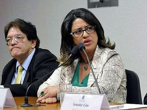 A contadora Meire Poza presta depoimento à CPI mista da Pretrobras (Foto: Gabriela Korossy/Câmara dos Deputados)