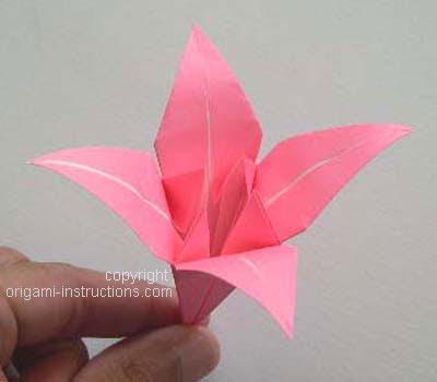 completed origami lily