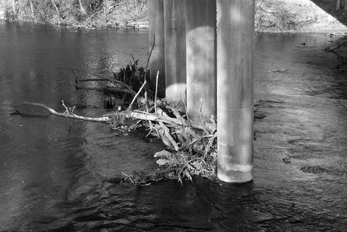Huron river debris