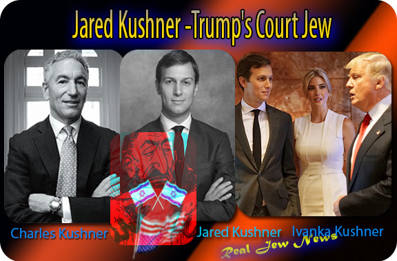 Image result for charles kushner and german jewish mafia
