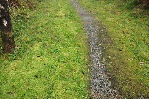 平元自然步道