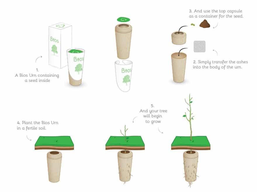 Instrucciones urna bios