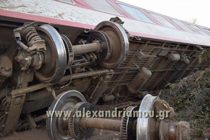 alexandriamou_treno_adentro2128