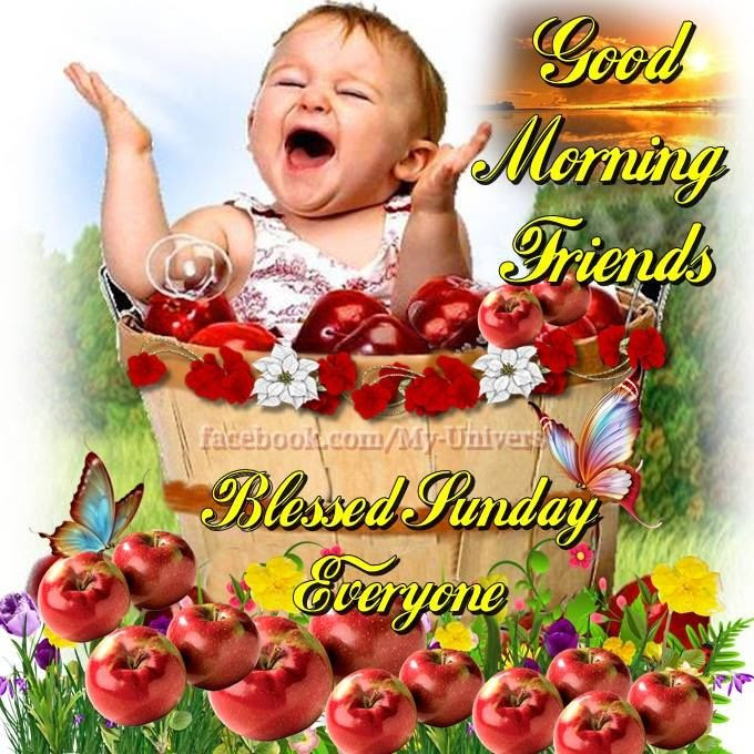 Blessed Sunday Everyone Good Morning Friends Pictures Photos And