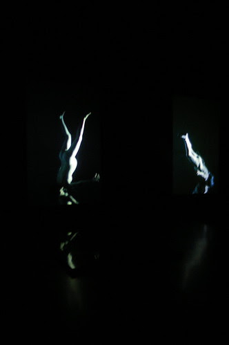 MOMA Video Exhibit 2 by betwixt