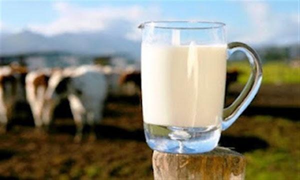 Θα «αφανίσει» την Ήπειρο ο νόμος για το φρέσκο γάλα - «Θα είναι ανεπιθύμητοι στον τόπο μας οι βουλευτές», λένε οι αγελαδοτρόφοι