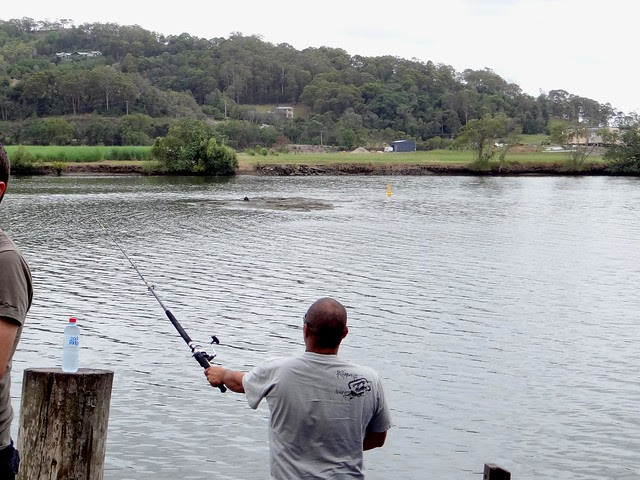 Fishing on the Maroochy River