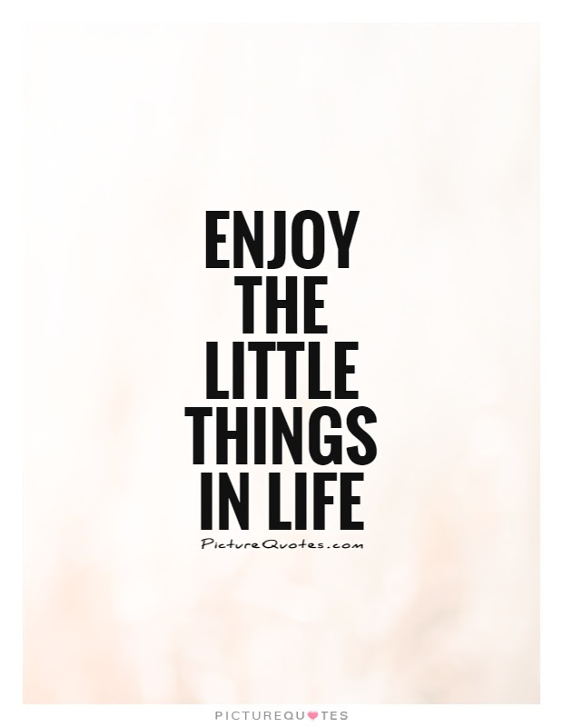 Little Things In Life Quotes Sayings Little Things In Life