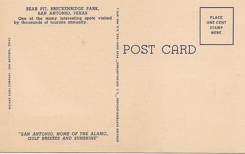 Back of Bear Postcard