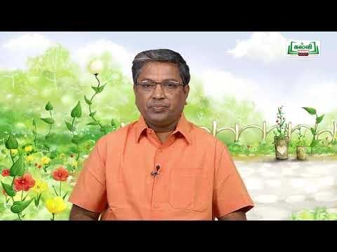 Class 10 வகுப்பு 10 அறிவியல் அலகு 12 தாவர உள்ளமைப்பியல், தாவர செயலியல் பகுதி 1 Kalvi TV