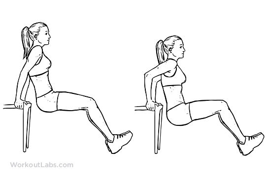 Image result for tricep chair dips