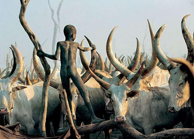 dinka-people-southern-sudan-angela-fisher-carol-beckwith-7
