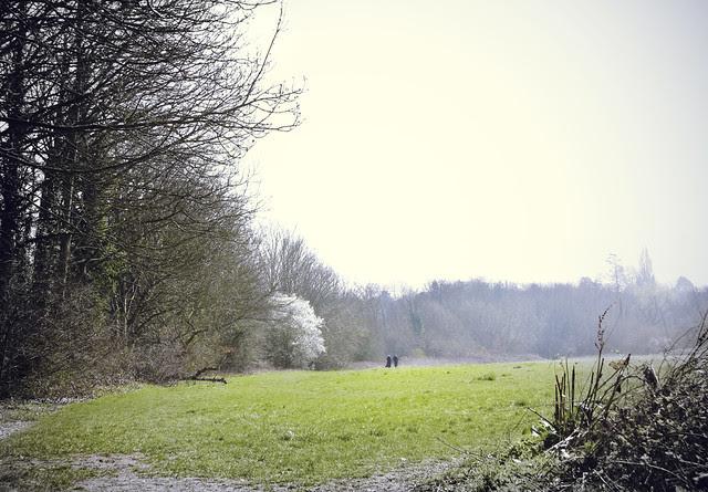 Field along Hogsmill River near Malden Manor